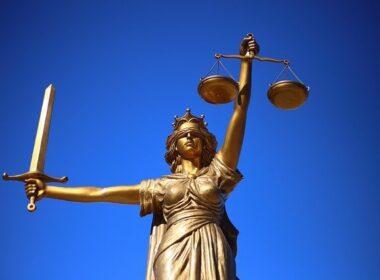 zaposlitev mladih pravnikov