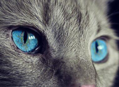 laserska operacija oci