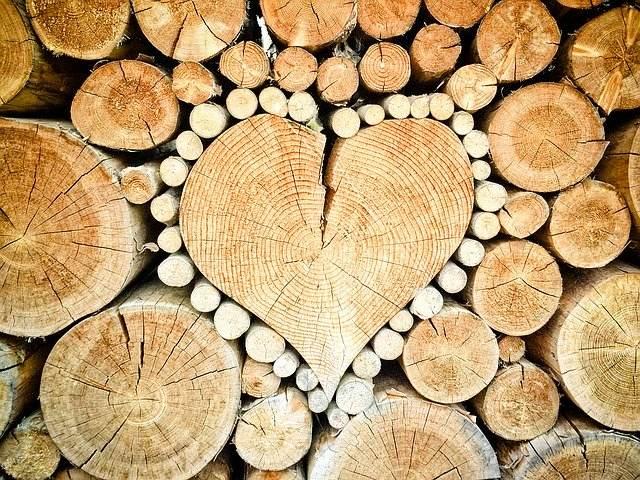 osebnostna rast srce
