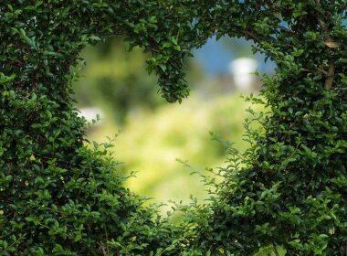 večna ljubezen