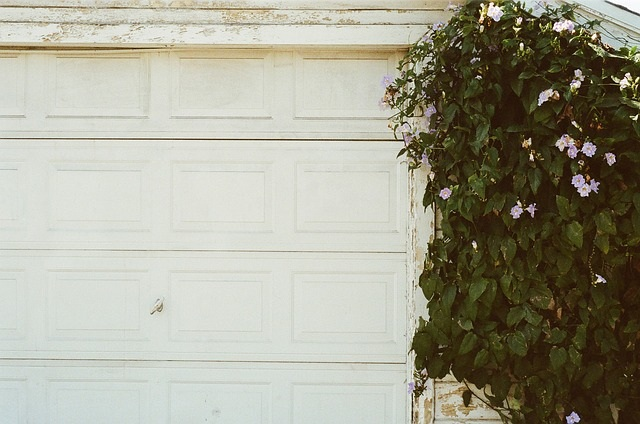garažna vrata bela