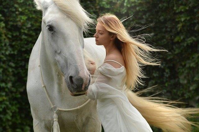 konji bel