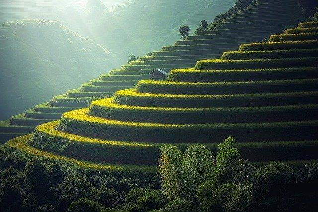 aplikacija thailand postcard vrt
