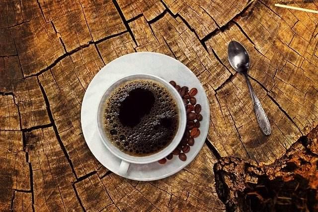 kava kavovec
