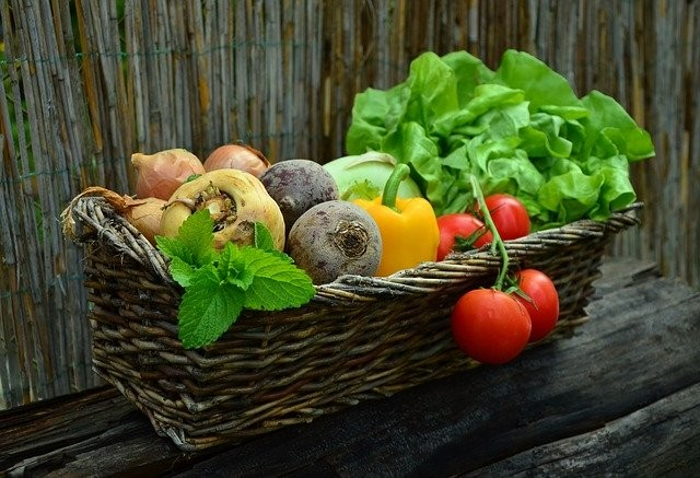 vrtnar vrtnarstvo zelenjava