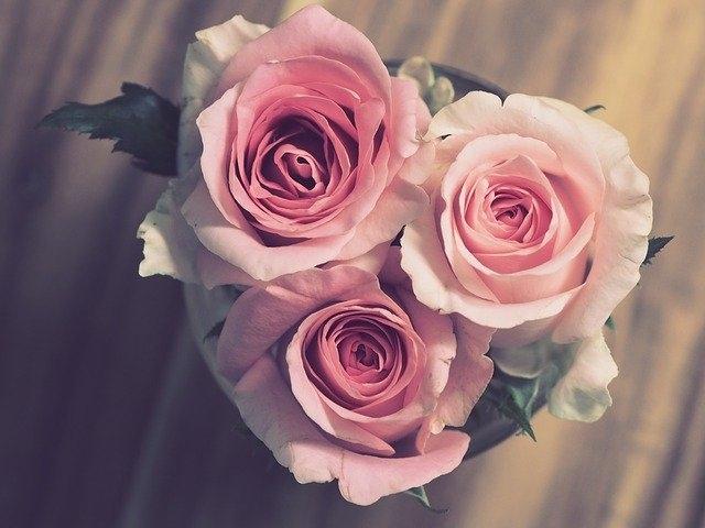 darilo za babico rože