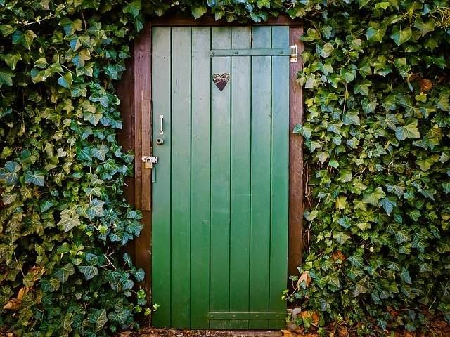 vhodna vrata zelenje