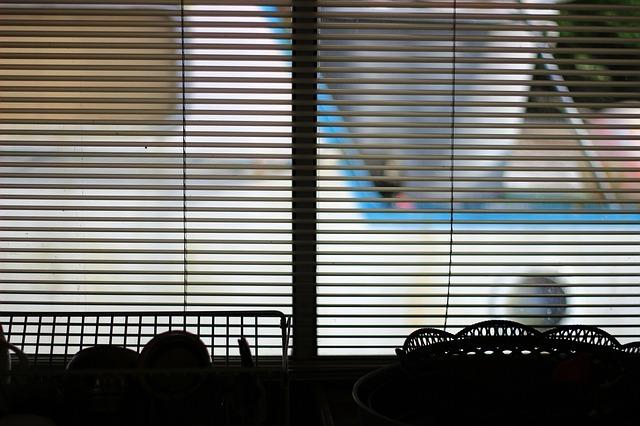 senčila okna