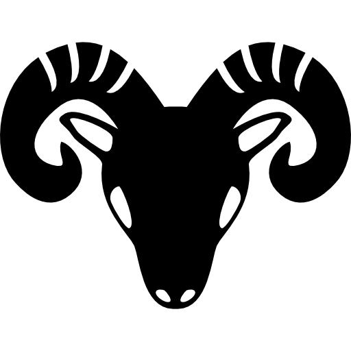 ikonica bik